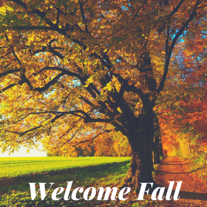 Welcome Winchester Fall